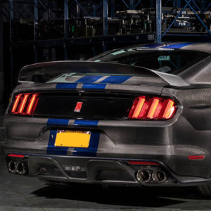 speedkore carbon fiber ford mustang gt350 rear view